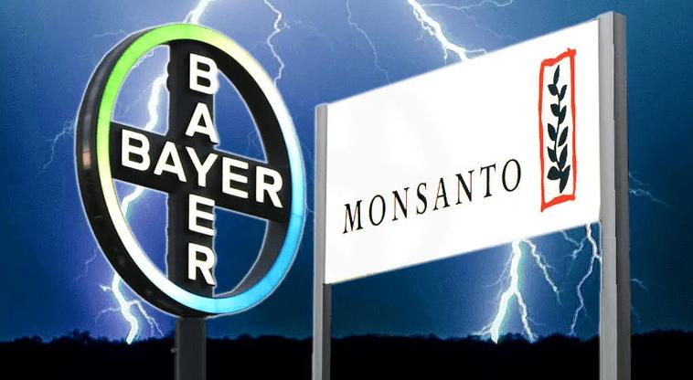 Rückblick: Glyphosat-Debatte 2020 in den USA und BRD